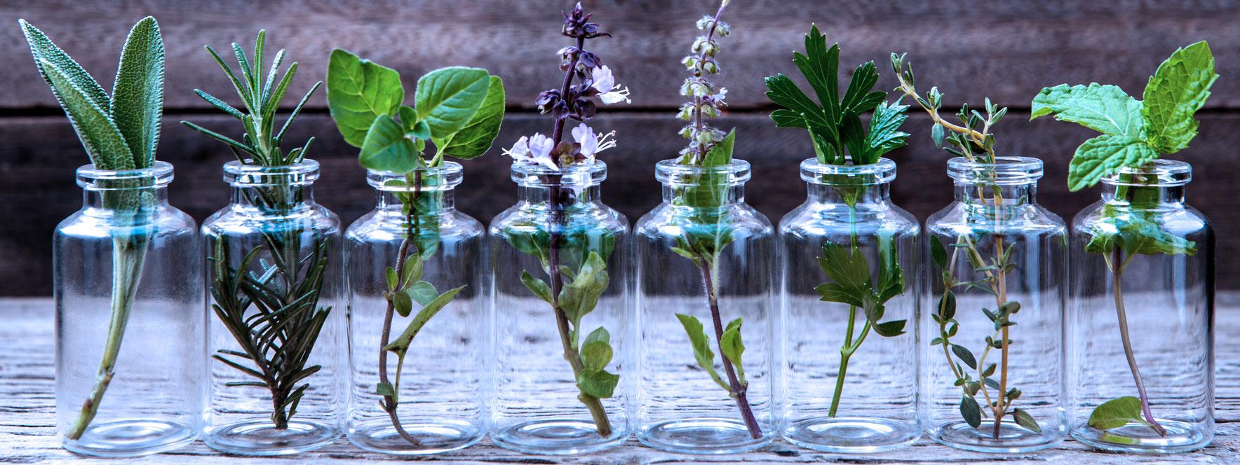 Le choix des huiles essentielles pour le massage - Blogue du Réseau