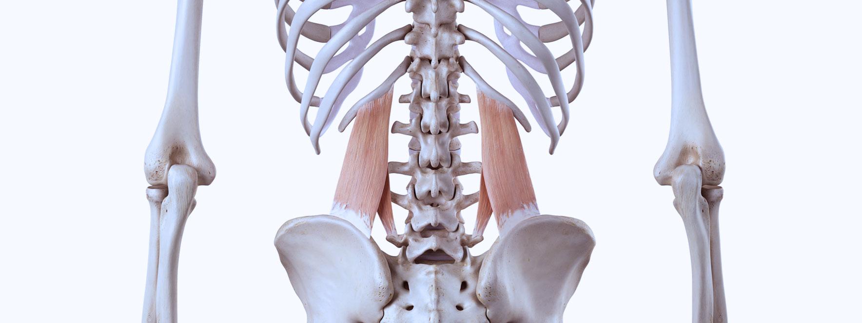 Cause simple : une compression à la hanche - Blogue du Réseau
