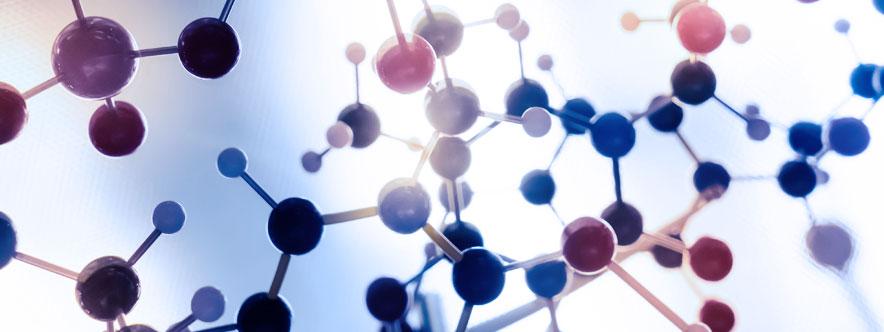 Ce que vous devez savoir sur le système immunitaire et le drainage lymphatique manuel - Blogue du Réseau