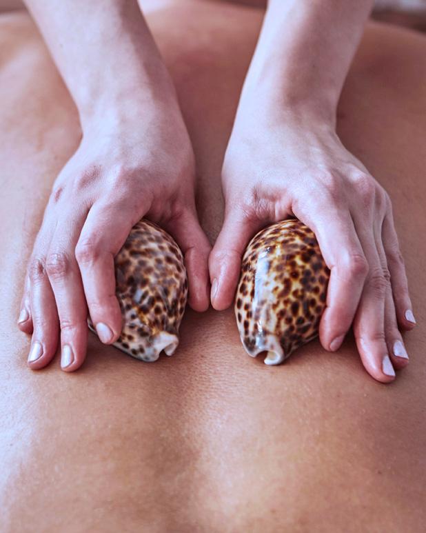 Massage aux coquillages chauds Réseau des massothérapeutes
